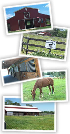 Pidllin Acres - Saluda, VA (Horse Boarding)
